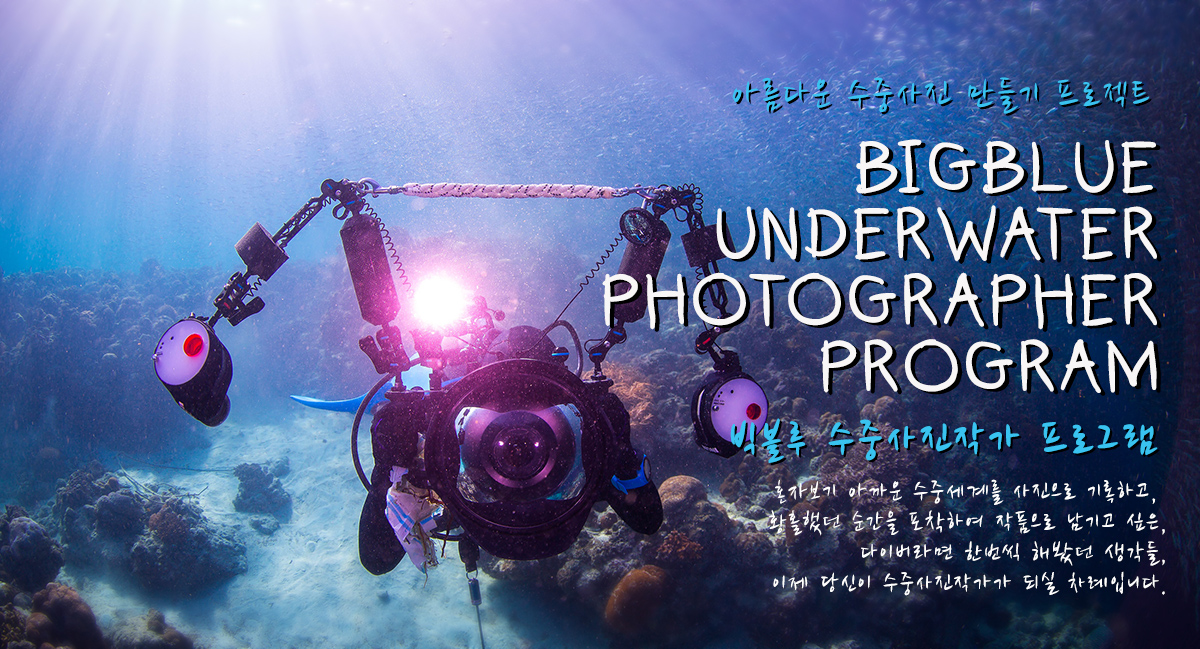 underwaterphotographer_1200px.jpg