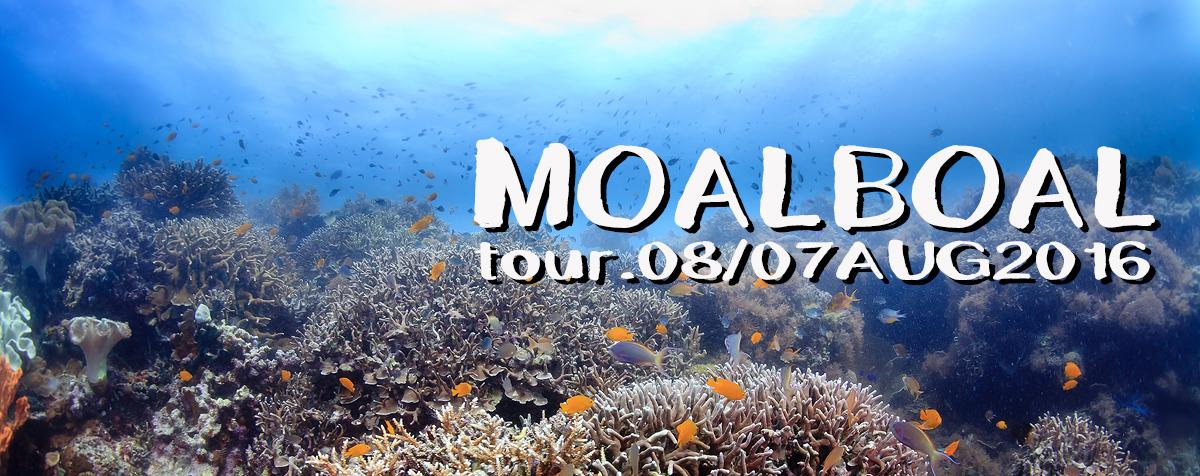 moalboal2016.JPG