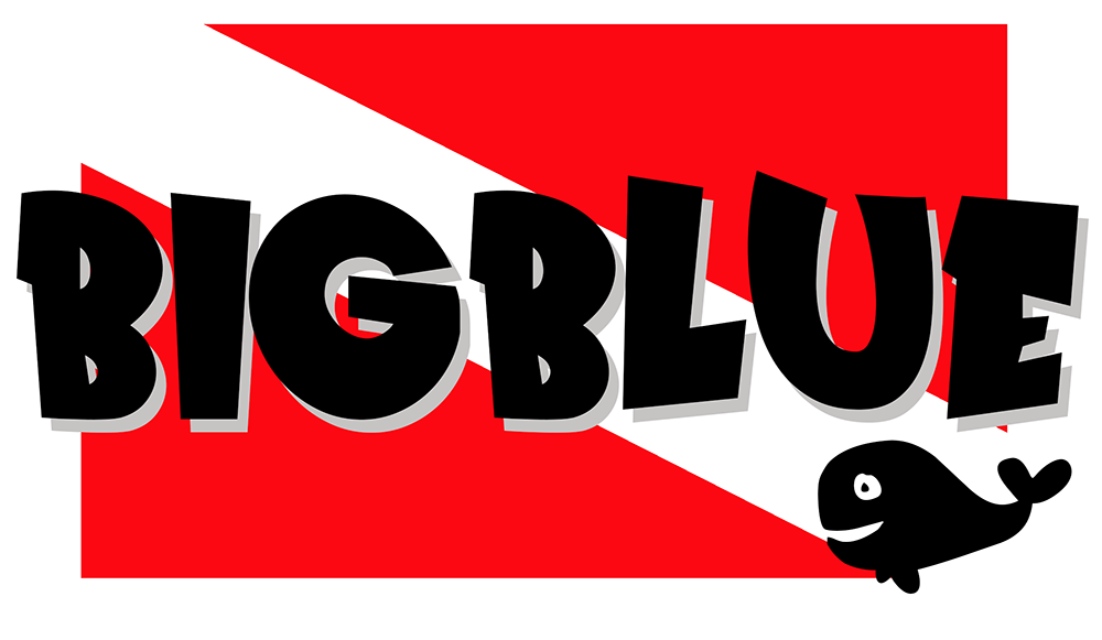 bigblue whale 1000px.PNG