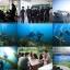 [2014.05.31] 오픈워터 해양실습 1일차.