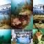 [2014.06.01] 오픈워터 해양실습 2일차.